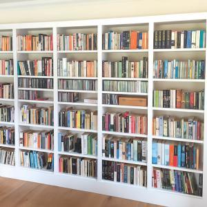 Home library shelving in white