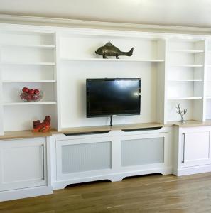 Media storage cabinet built in